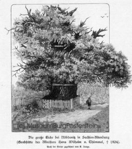 View of the 1000 year old oak tree from 19th century (Museum Burg Posterstein)