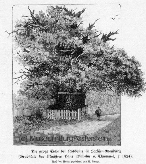 Hans Wilhelm von Thümmel wählte sich die 1000-jährige Eiche in Nöbdenitz zu seiner außergewöhnlichen Grabstätte.