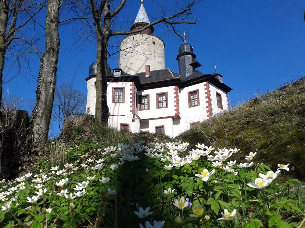 Das Burg Posterstein bietet in diesem Jahr mit Ferienprogrammen, Kinderblog und Familienausstellung ein umfangreiches Programm für Familien.