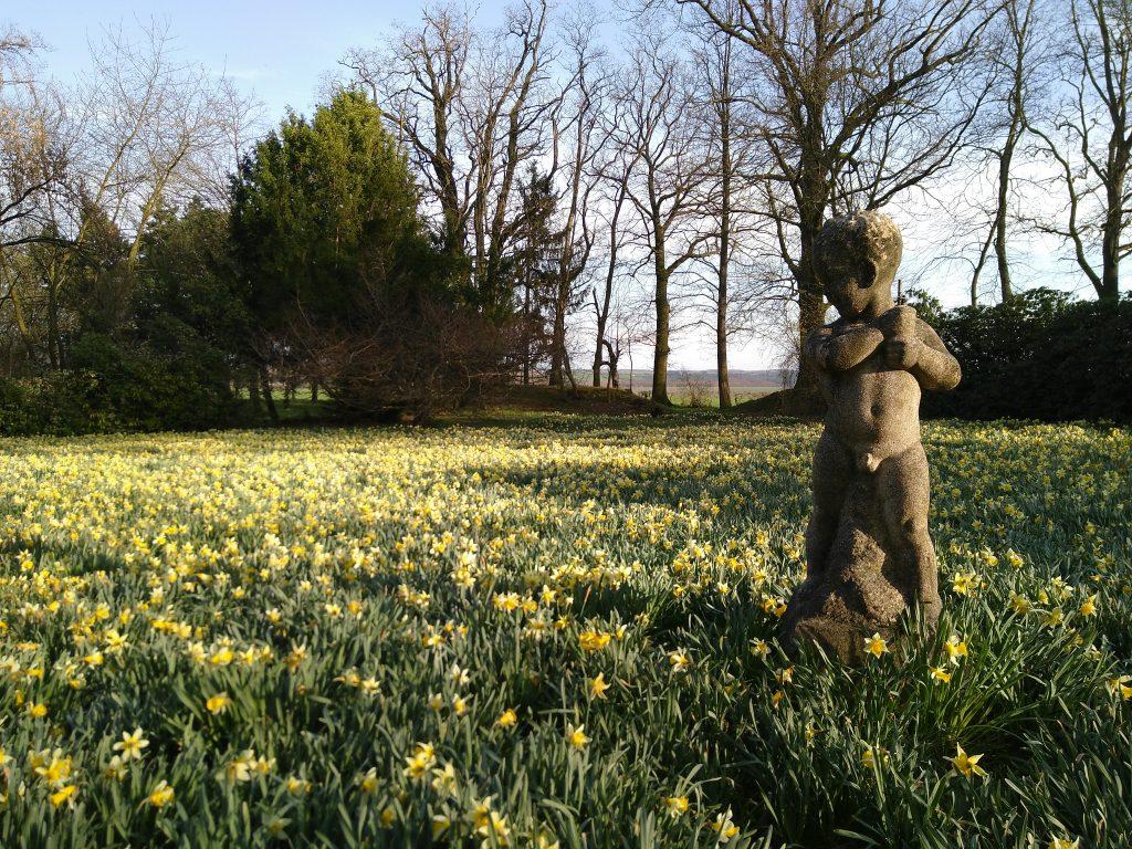 Der Schlosspark Tannenfeld im Frühling 2018 (Foto: Marlene Hofmann)