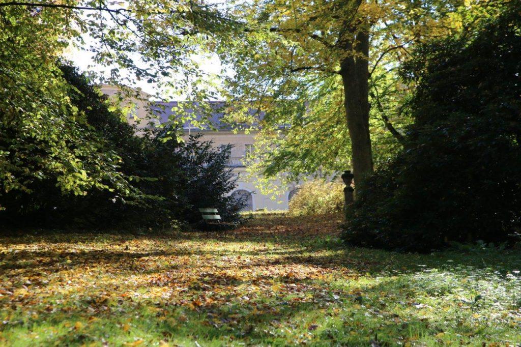 Hinter den Bäumen kann man Schloss Tannenfeld erahnen (Foto: Jana Boarath 2017)