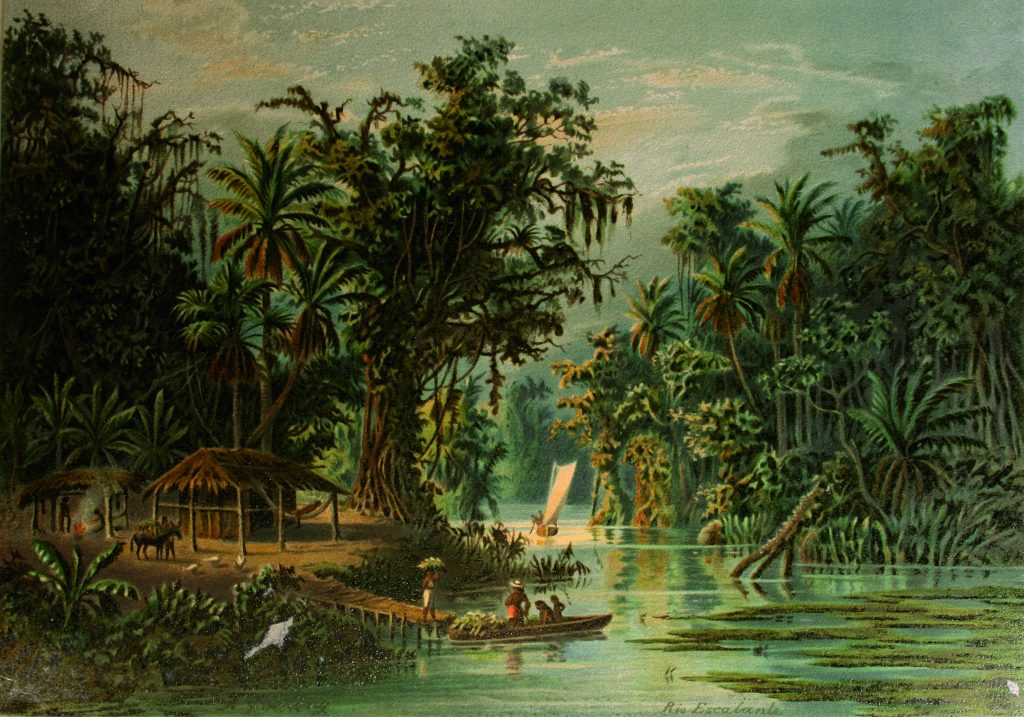 Anton Goering: Rio Escalante, aus: Anton Goering: Vom tropischen Tieflande zum ewigen Schnee. Eine malerische Schilderung des schönsten Tropenlandes: Venezuela, Leipzig 1893.