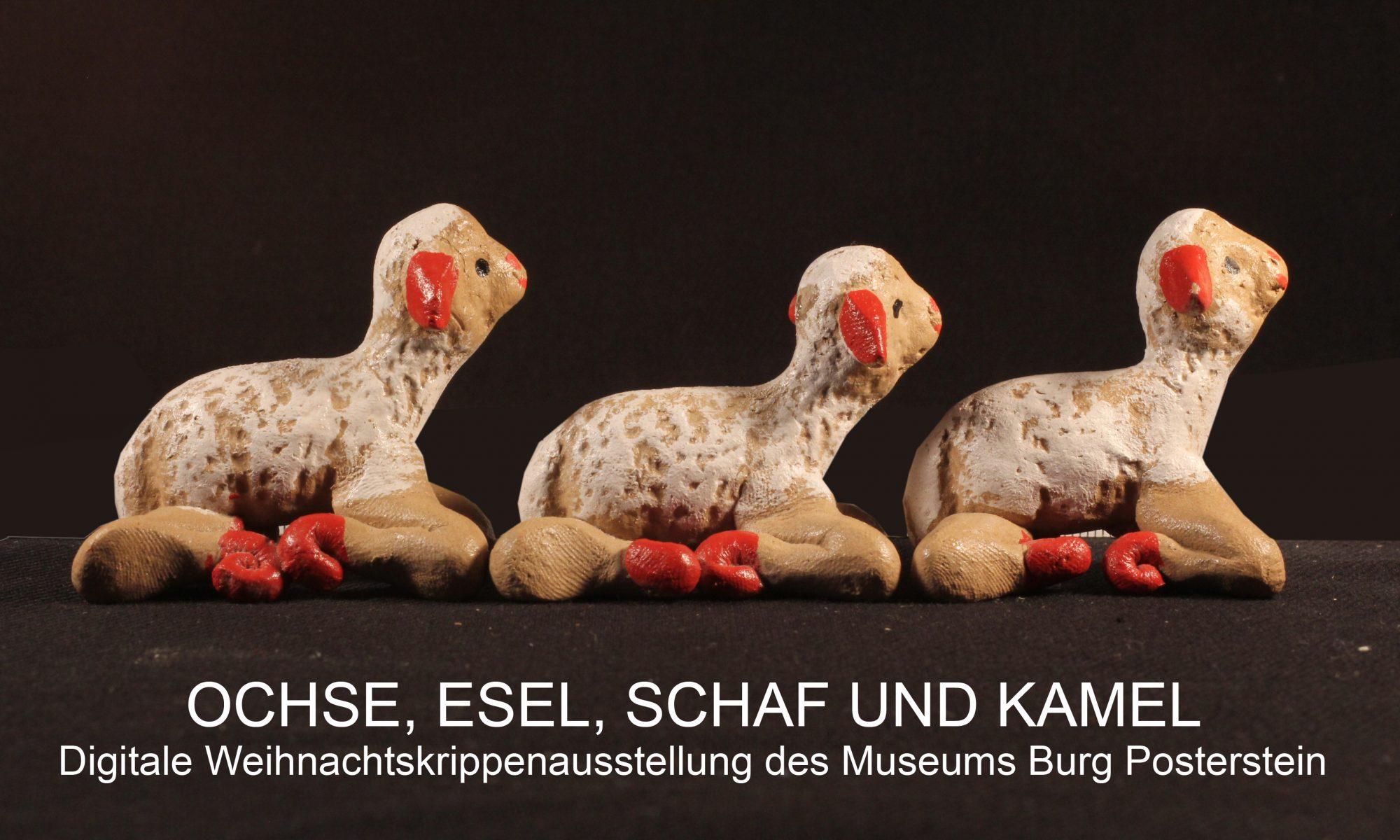 Banner digitale Weihnachtsausstellung auf Burg Posterstein - mit drei Schafen