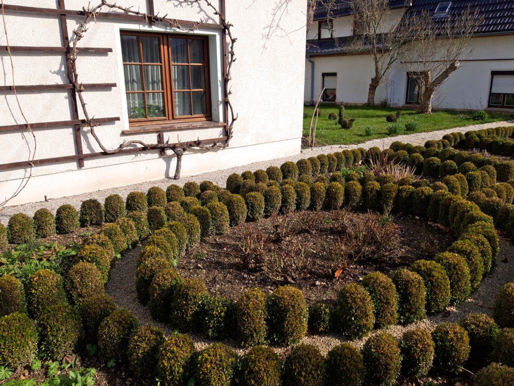 Die Ziergärten der Bauerngärten waren oft mit Buchsbaum umrandet.